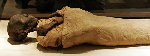 قصة اكتشاف جثة الفرعون 1183752857455798230_