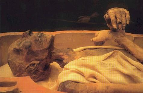 قصة اكتشاف جثة الفرعون 1183752920momia.jpg