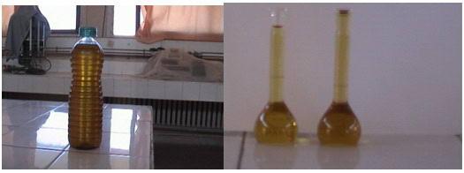 اكتشافات العلم فوائد الزيتون المذكورة