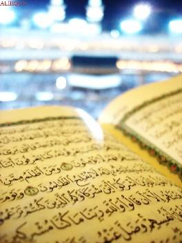 المناسبة بين الأبنية المتماثلة في القرآن الكريم دراسة في دلالة المبنى على المعنى