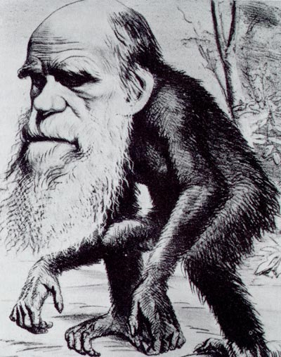 نظرية التطور بين المؤيدين والمعارضين