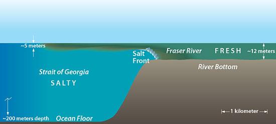 أسرار البرزخ بين البحرين والحواجز المائية 1243046491br4.jpg