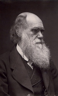 علم الفيزياء.. ينقض نظرية التطور