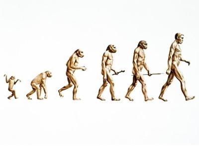 نقد نظريات التطور